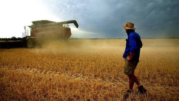 FarmersAustralia