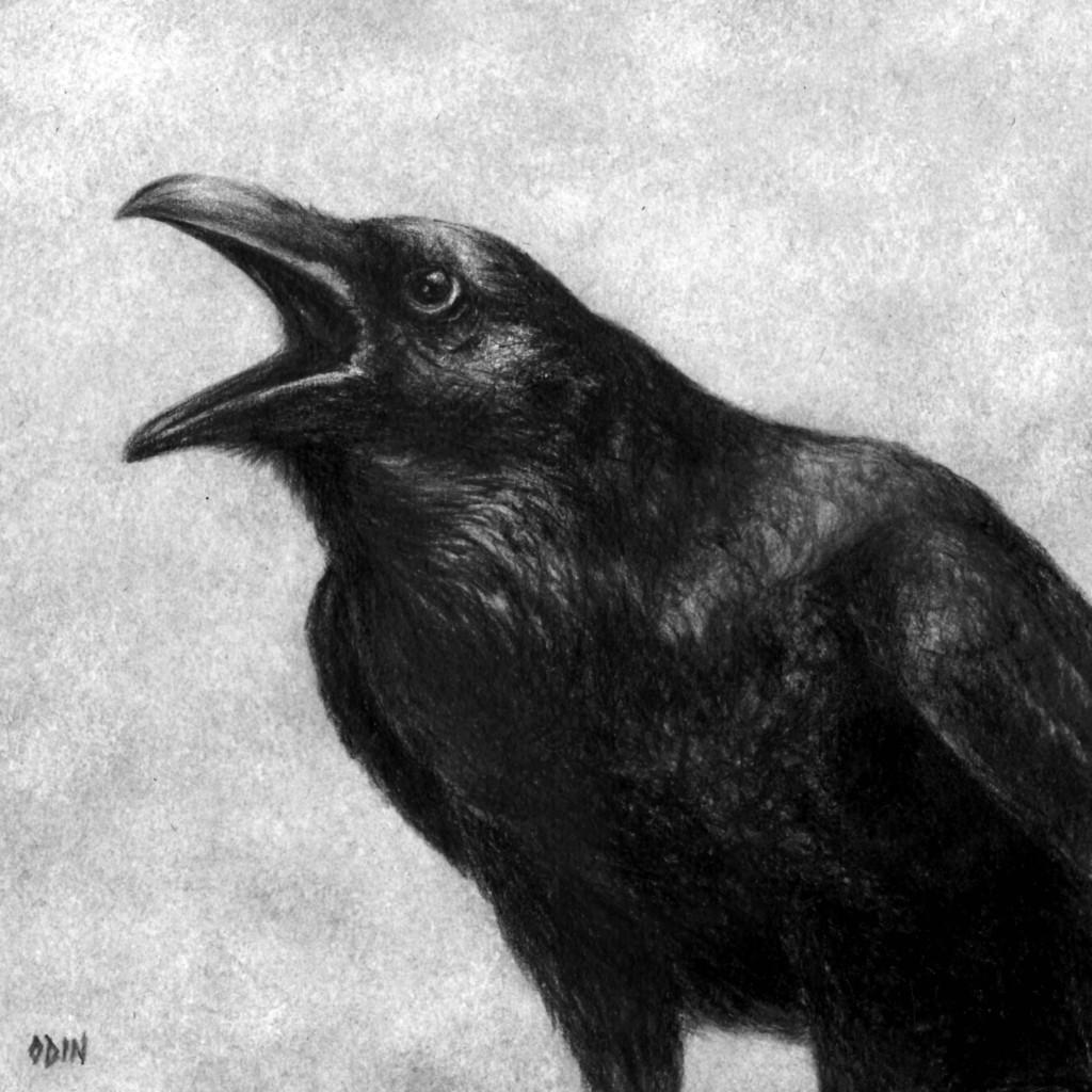 M. Odin Raven