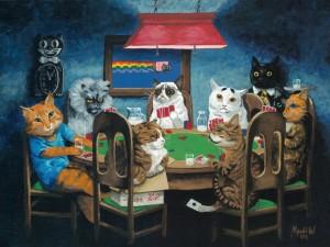 cats poker
