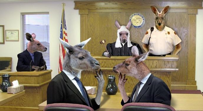 kangaroo-court-1