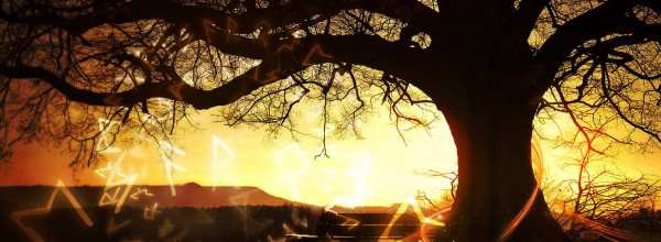 The Solar Storm: Wodenson (8-17-14)