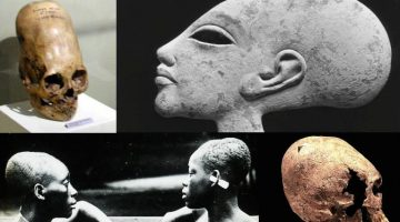 Truth Hertz: Iran Conflict, Philistine Giants, and Elongated Skulls (1-13-20)